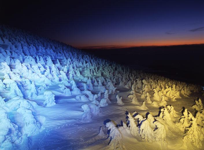 樹氷〜スノーモンスター〜/山形を見る&遊ぶ⑧