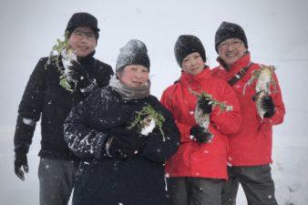 雪下だいこんを掘りに行ってきました!