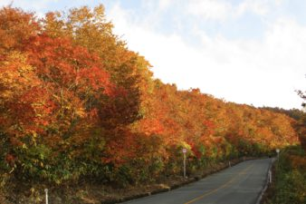 まさに絶景!蔵王エコーライン(蔵王坊平高原・お釜)の紅葉