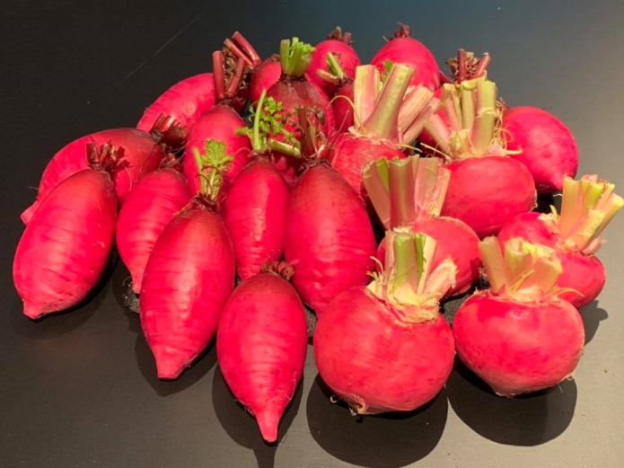 季節の美味しさ便り/冬の山形野菜
