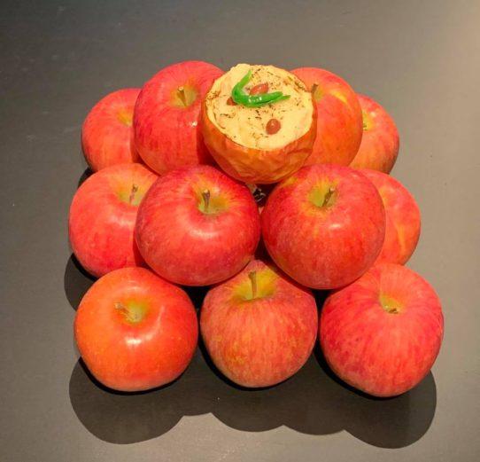 季節の美味しさ便り/ふじりんごのグラタン
