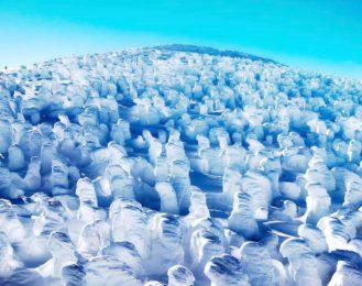 世界に誇る雪の造形美!蔵王のスノーモンスター『樹氷』
