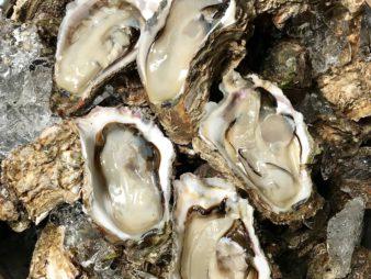夏限定の味覚 新潟『笹川流れの天然 岩牡蠣』