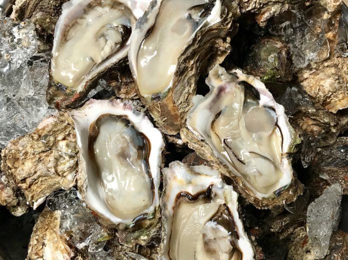 夏限定の鳥海山からの贈り物『天然物 庄内浜の岩牡蠣』