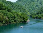 夏のレア体験『水陸両用バスin長井ダム百秋湖』