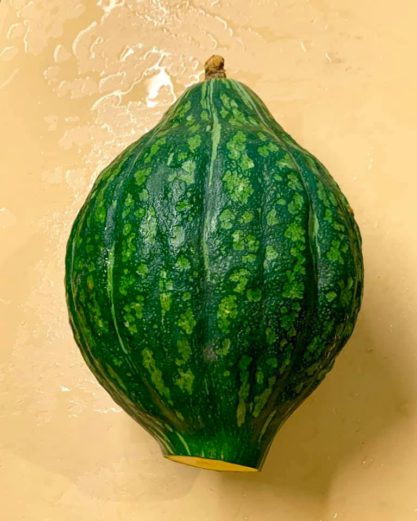 「山形座 瀧波」の夏野菜